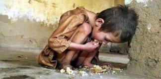 Se olvidaron de la crisis alimentaria