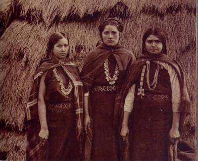 El pueblo mapuche, un problema político permanente para el estado de chile
