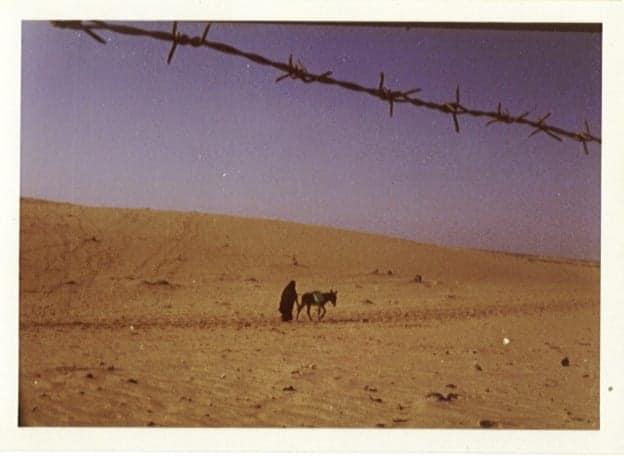 Sinai / Carlos Shaferstein
