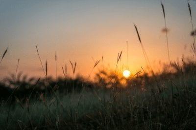 Dos poemas de raúl arredondo