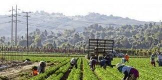 Legislación para proteger a trabajadores del calor
