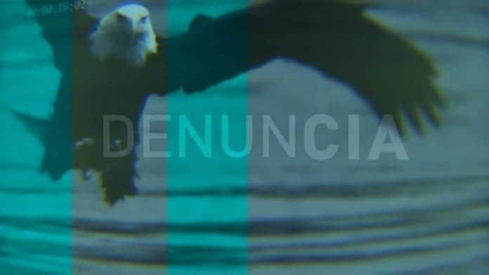 José daniel ferrer: cómo fabricar un preso político en cuba