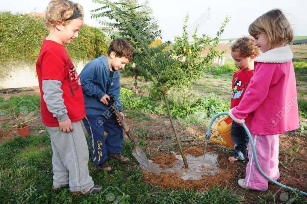 Tu b'shvat: el año nuevo de los árboles
