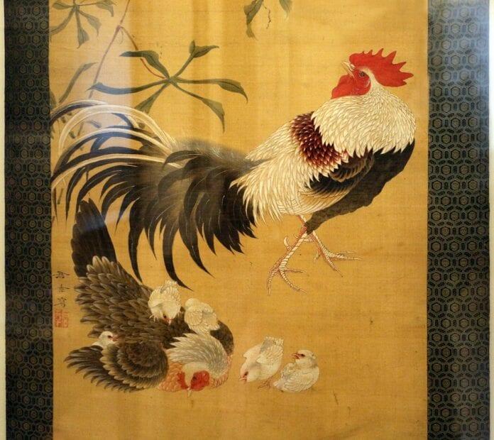 Qué fue primero El gallo o la gallina